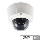 2MP Infrared Armor Dome Network Camera