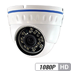 2 Megapixel 1080P Infrared Varifocal HD-CVI Armor Ball