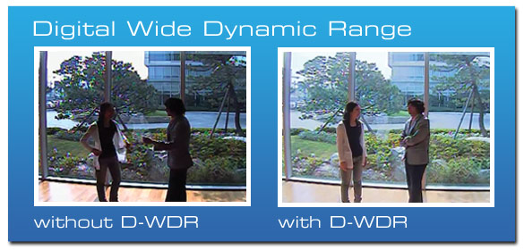 Digital Wide Dynamic Range